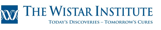 12.1 Million NCI Grant Awarded For Melanoma Research at Wistar Institute