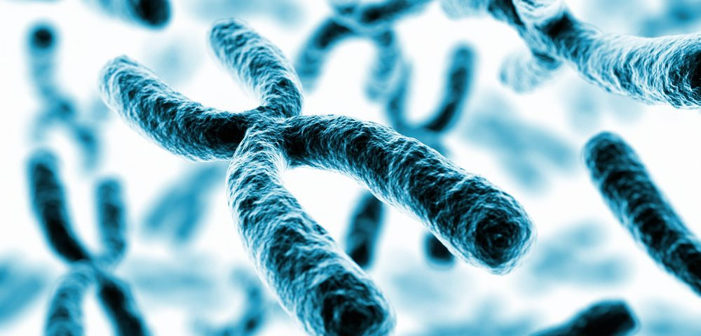 X Chromosome Study Explores Why Melanoma is More Deadly for Men