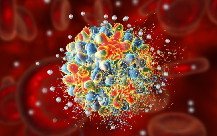 immune cells as carriers for cancer drugs